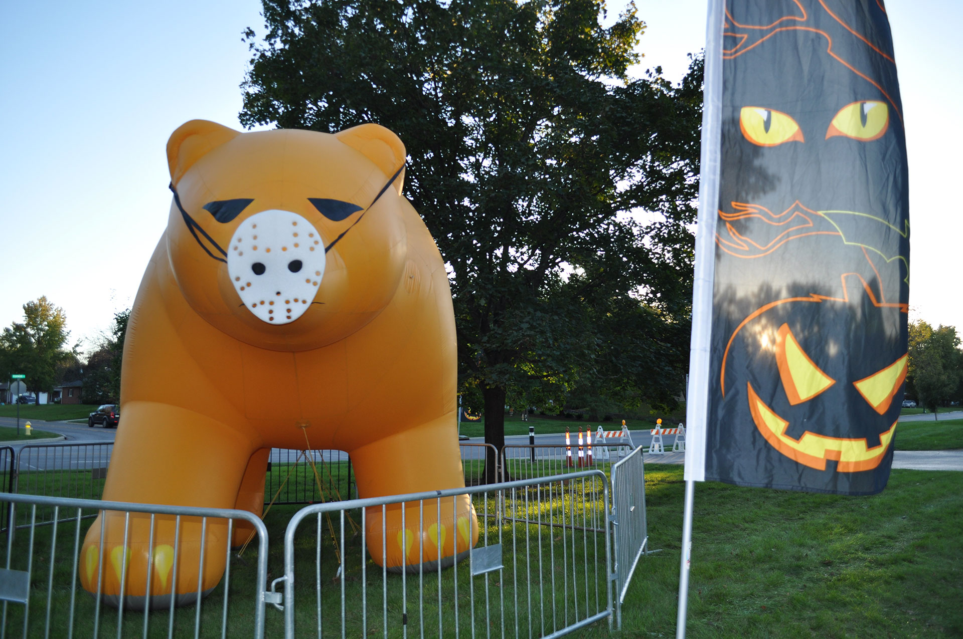 UACA's Golden Bear Scare