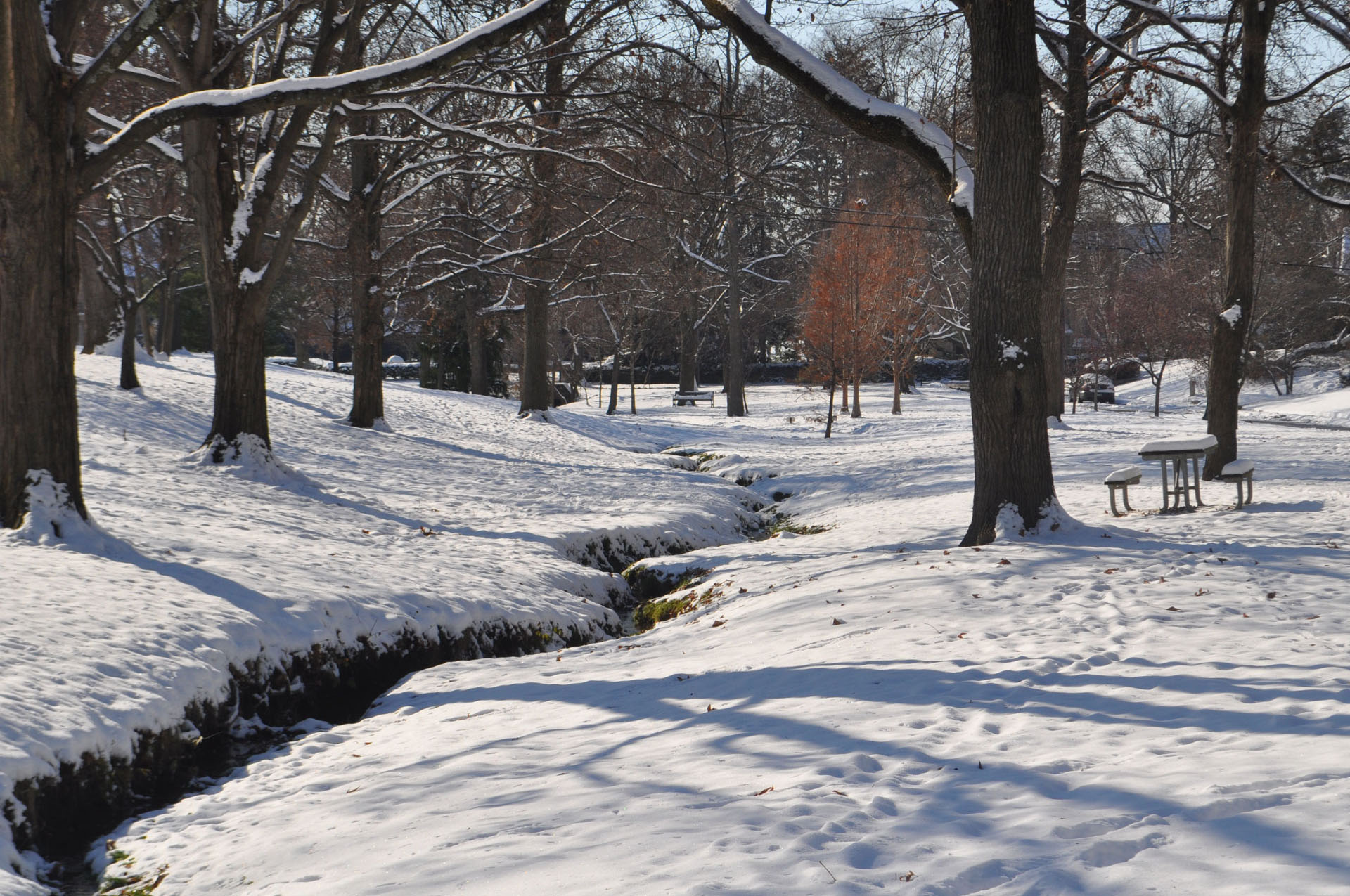 Jack Nicklaus Park Winter