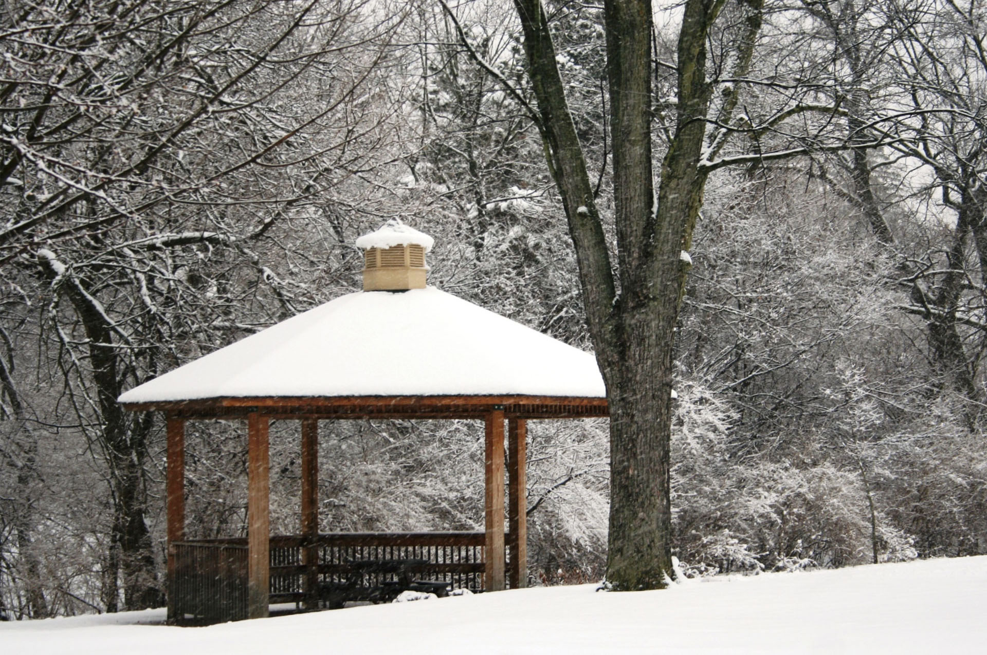 Miller Park Gazebo In Winter