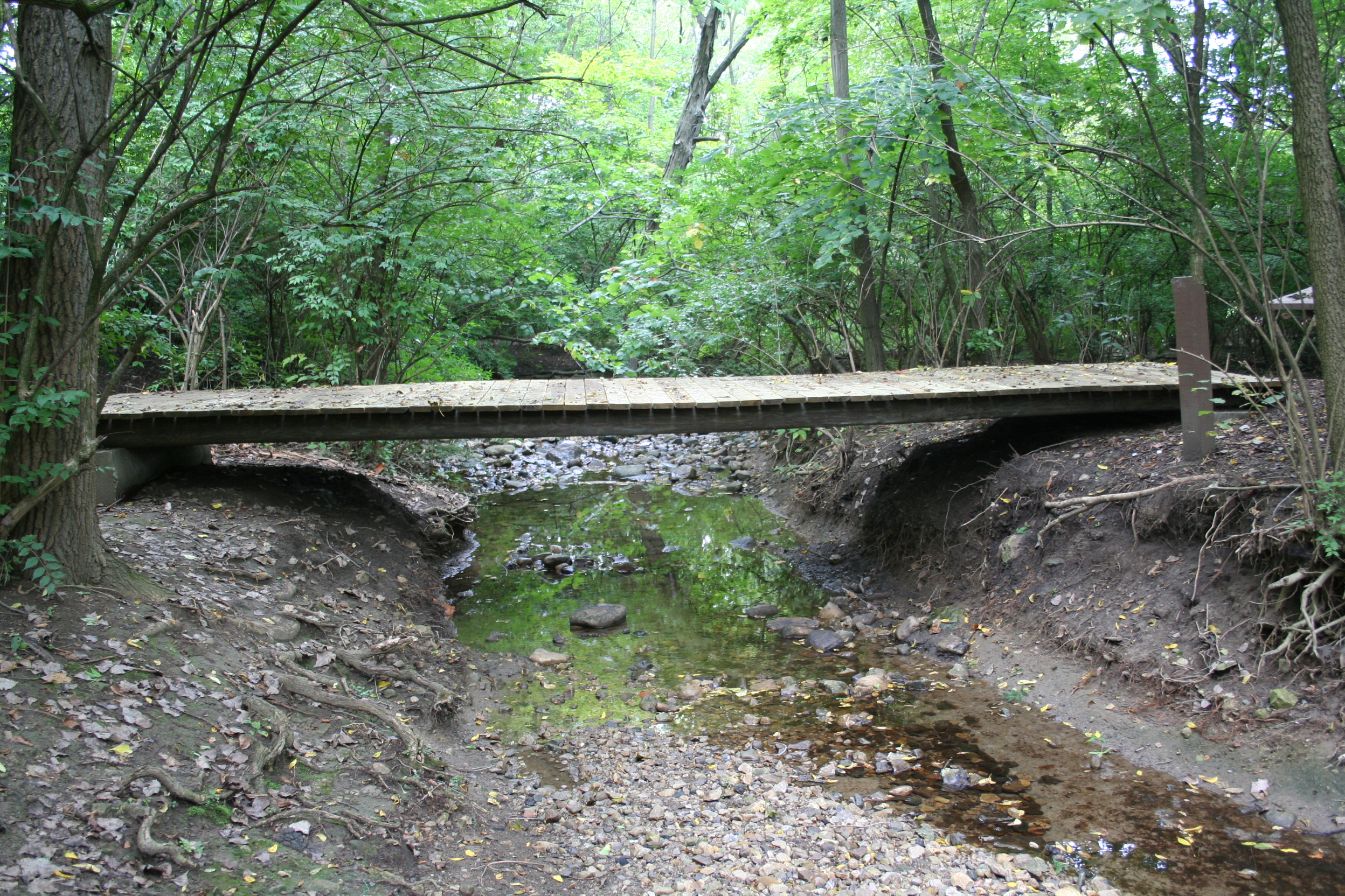 Smith Nature Park Bridge
