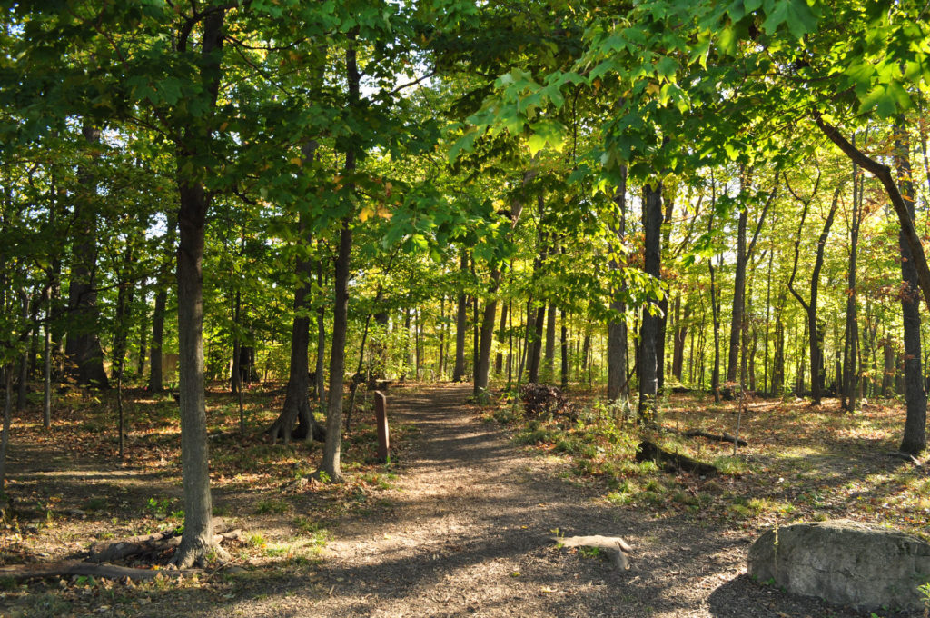 Smith Nature Park Trail