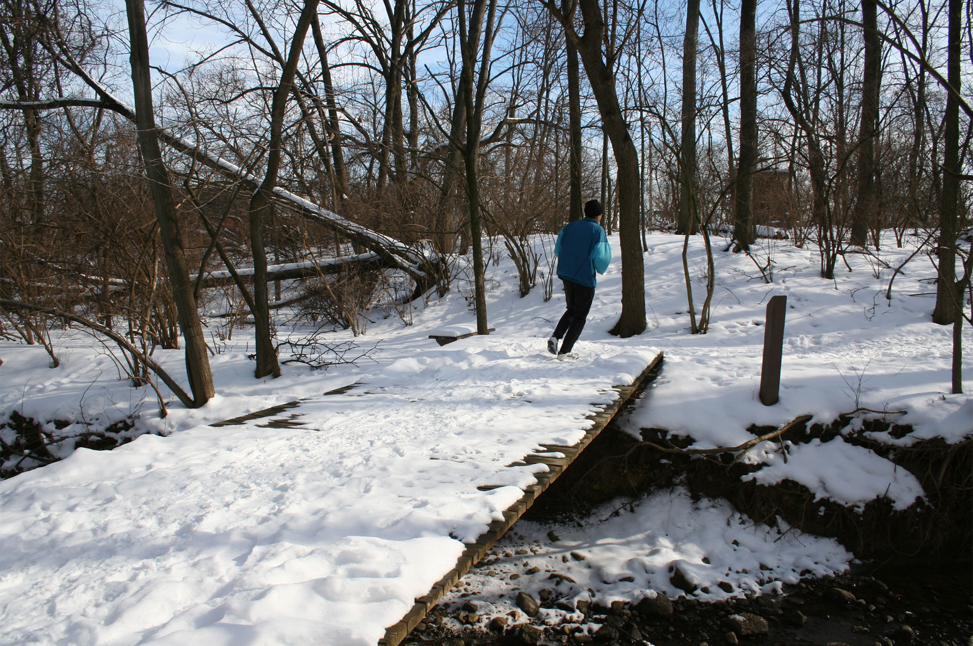 Smith Nature Park Winter Runner