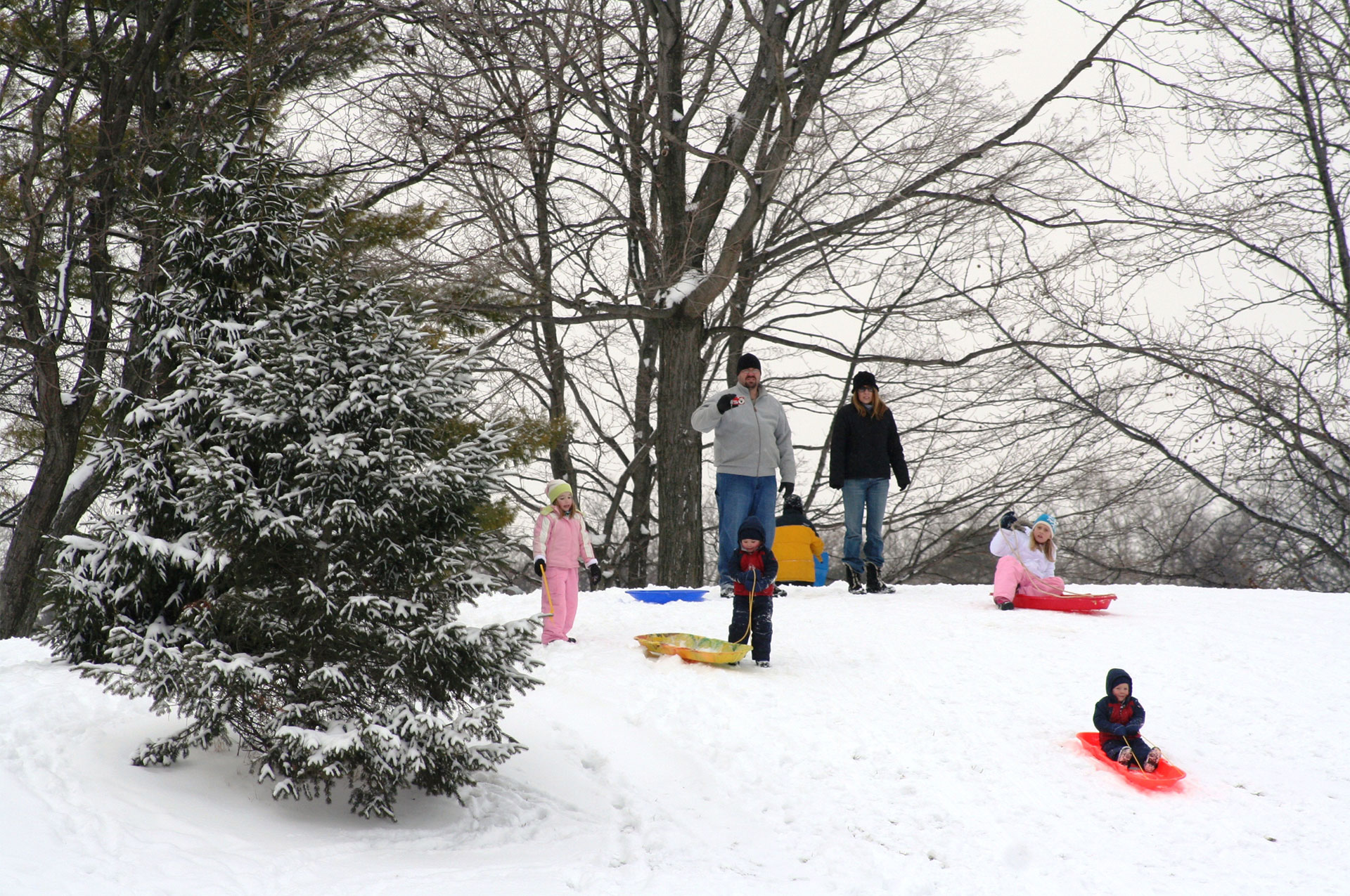 Thompson Park Sledding