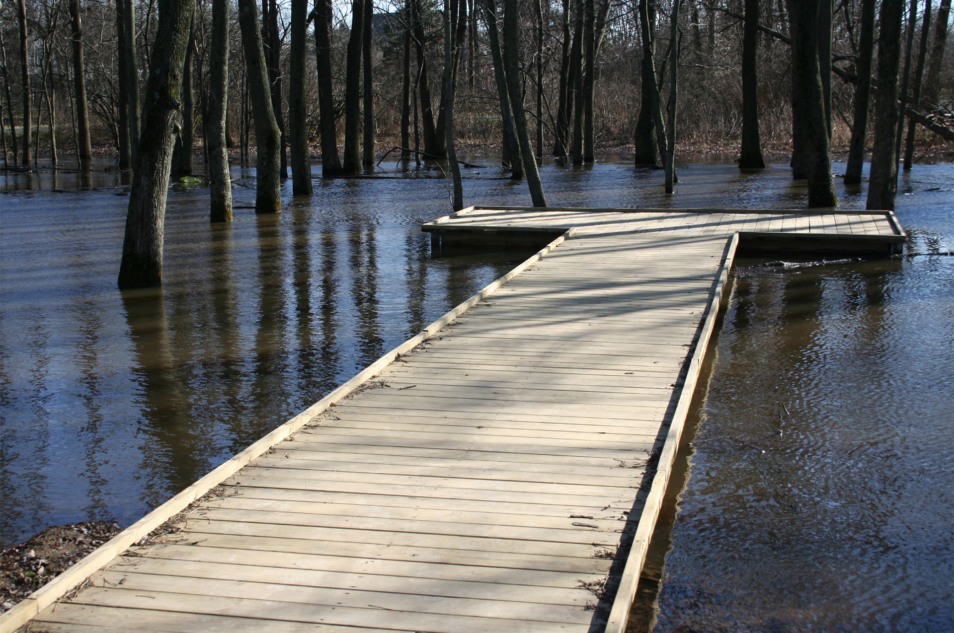 Thompson Wetland Boardwalk
