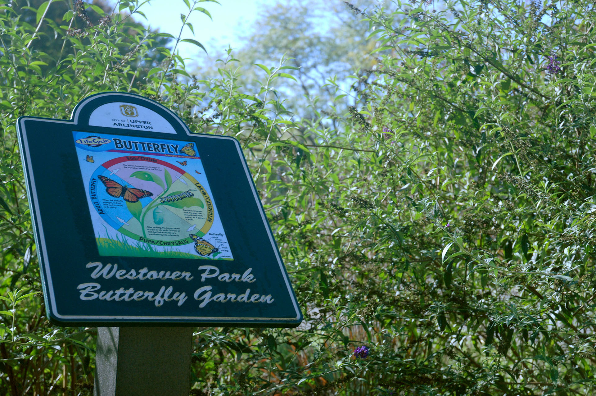 Westover Butterfly Garden Sign