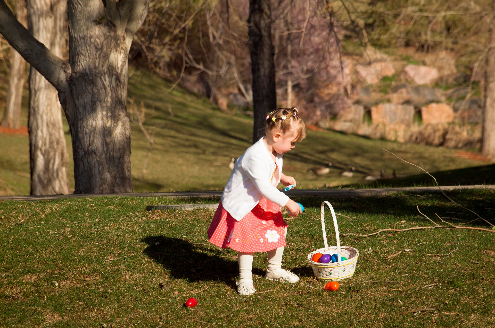 Easter Egg Picker